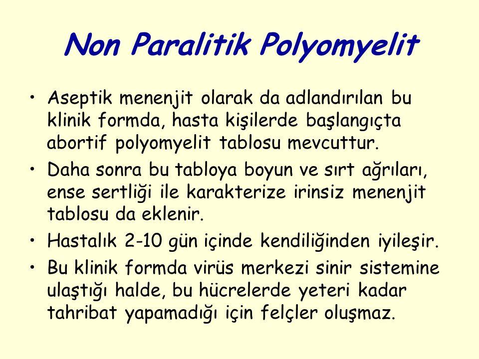 Non Paralitik Polyomyelit Aseptik menenjit olarak da adlandırılan bu klinik formda, hasta kişilerde başlangıçta abortif polyomyelit tablosu mevcuttur.