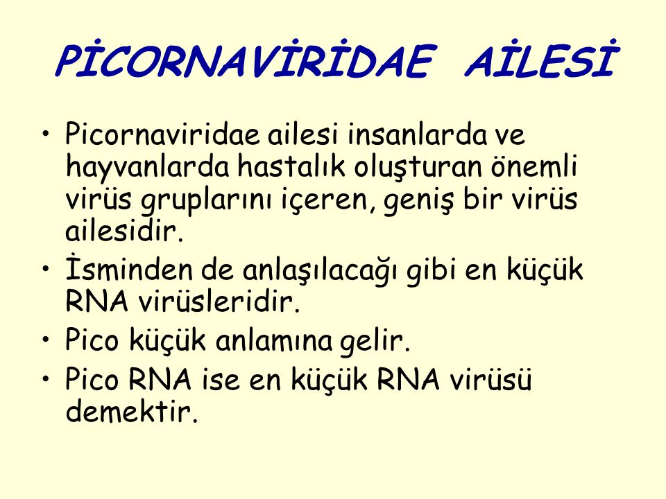 PİCORNAVİRİDAE AİLESİ Picornaviridae ailesi insanlarda ve hayvanlarda hastalık oluşturan önemli virüs gruplarını içeren, geniş bir virüs ailesidir.