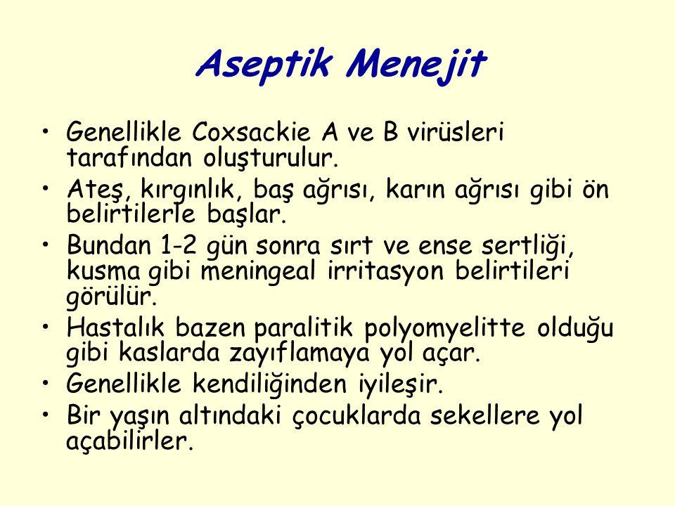 Aseptik Menejit Genellikle Coxsackie A ve B virüsleri tarafından oluşturulur.