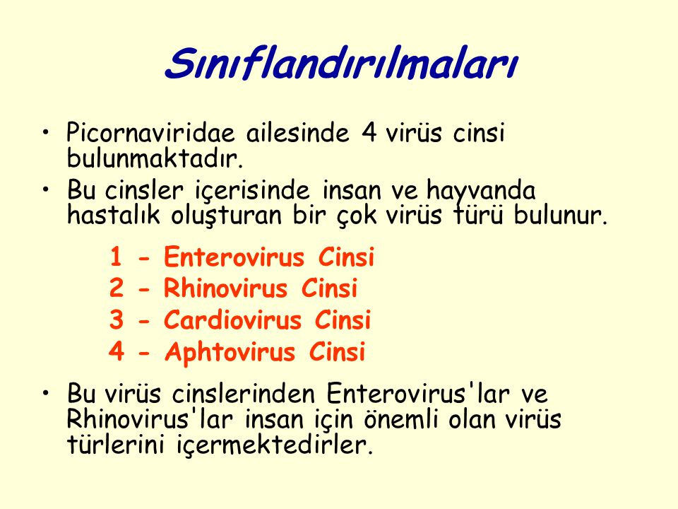 Sınıflandırılmaları Picornaviridae ailesinde 4 virüs cinsi bulunmaktadır.