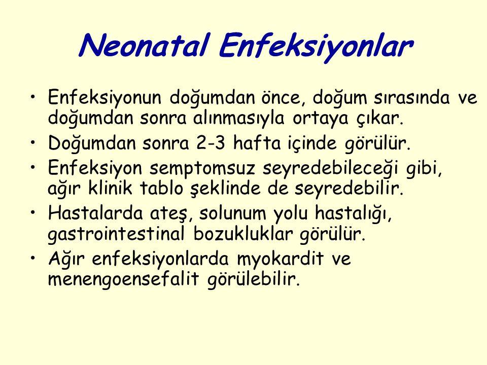 Neonatal Enfeksiyonlar Enfeksiyonun doğumdan önce, doğum sırasında ve doğumdan sonra alınmasıyla ortaya çıkar.