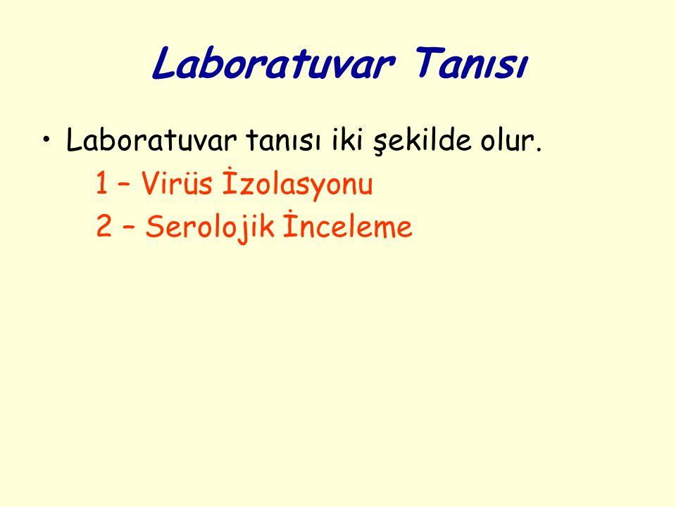 Laboratuvar Tanısı Laboratuvar tanısı iki şekilde olur. 1 – Virüs İzolasyonu 2 – Serolojik İnceleme