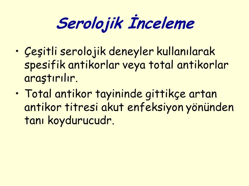 Serolojik İnceleme Çeşitli serolojik deneyler kullanılarak spesifik antikorlar veya total antikorlar araştırılır.