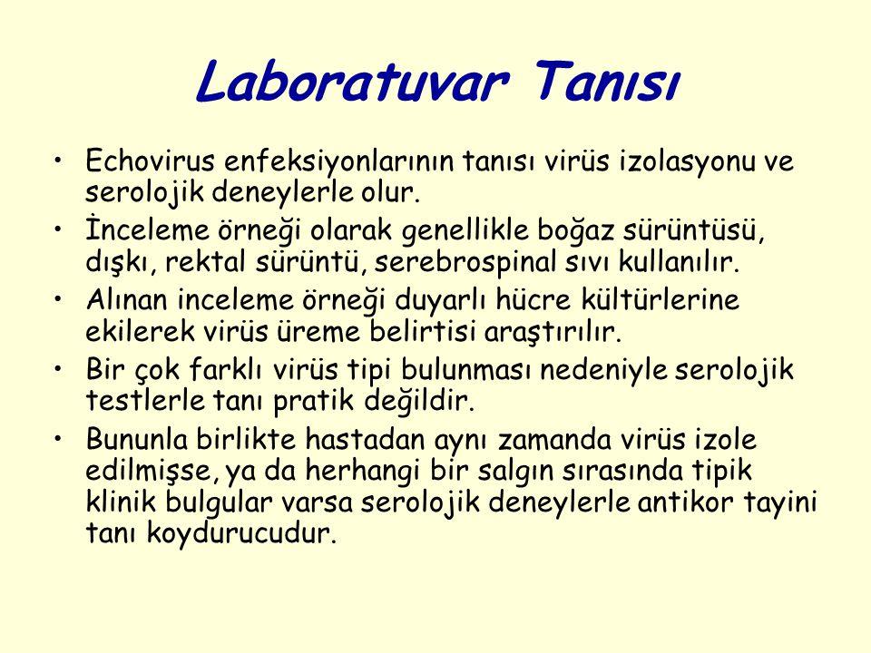 Laboratuvar Tanısı Echovirus enfeksiyonlarının tanısı virüs izolasyonu ve serolojik deneylerle olur.