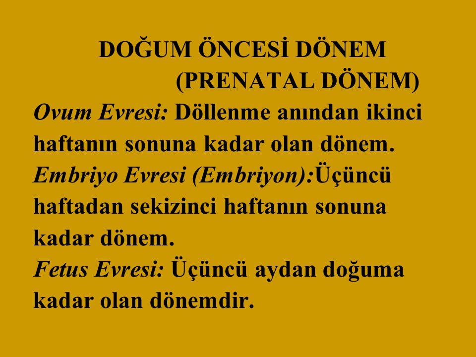 DOĞUM ÖNCESİ DÖNEM (PRENATAL DÖNEM) Ovum Evresi: Döllenme anından ikinci haftanın sonuna kadar olan dönem. Embriyo Evresi (Embriyon):Üçüncü haftadan s