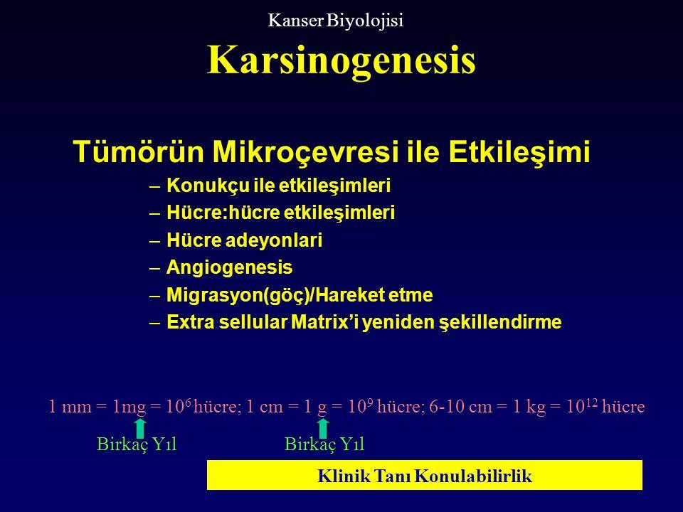 Tümörün Mikroçevresi ile Etkileşimi –Konukçu ile etkileşimleri –Hücre:hücre etkileşimleri –Hücre adeyonlari –Angiogenesis –Migrasyon(göç)/Hareket etme