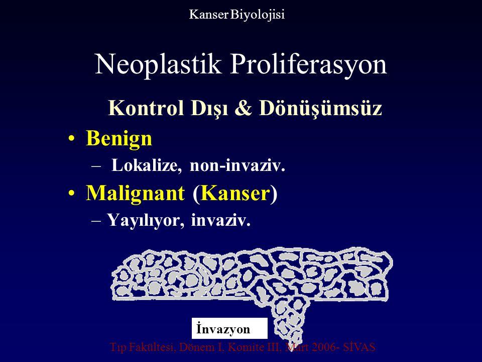 Neoplastik Proliferasyon Kontrol Dışı & Dönüşümsüz Benign – Lokalize, non-invaziv. Malignant (Kanser) –Yayılıyor, invaziv. Kanser Biyolojisi İnvazyon