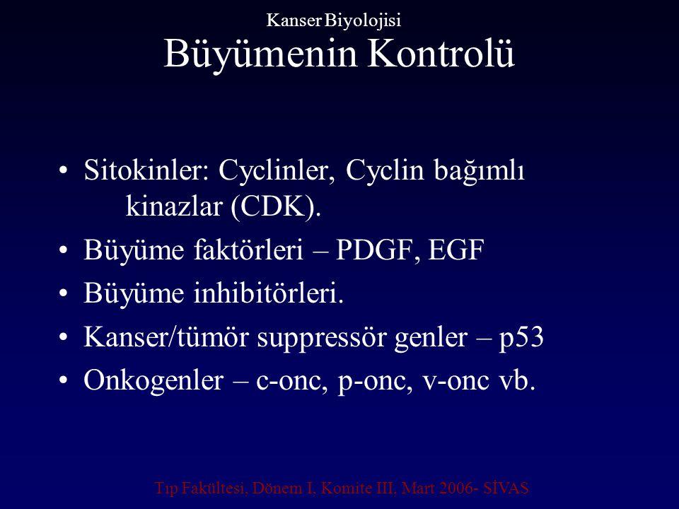 Büyümenin Kontrolü Sitokinler: Cyclinler, Cyclin bağımlı kinazlar (CDK). Büyüme faktörleri – PDGF, EGF Büyüme inhibitörleri. Kanser/tümör suppressör g