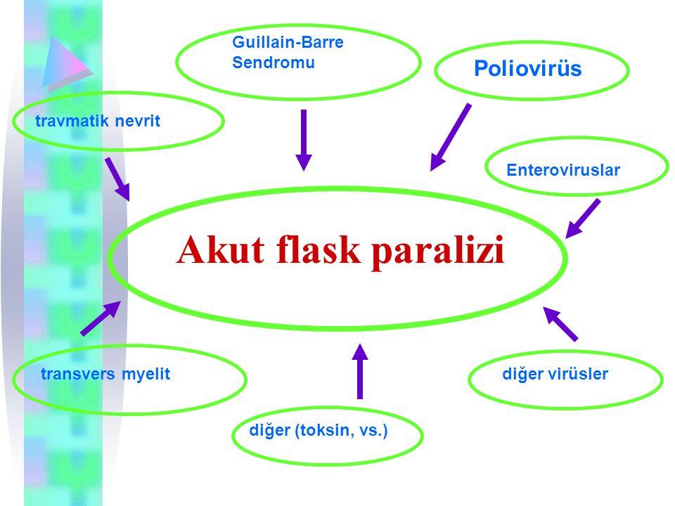 Akut flask paralizi Guillain-Barre Sendromu travmatik nevrit transvers myelit Poliovirüs diğer virüsler diğer (toksin, vs.) Enteroviruslar