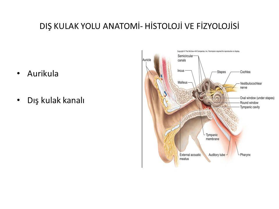 AURİKULADA LASERASYON Künt ve penetran yaralanmalar sonucu meydana gelebilir.