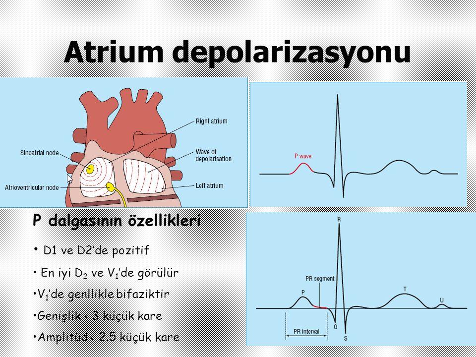 Atrium depolarizasyonu P dalgasının özellikleri D1 ve D2'de pozitif En iyi D 2 ve V 1 'de görülür V 1 'de genllikle bifaziktir Genişlik < 3 küçük kare
