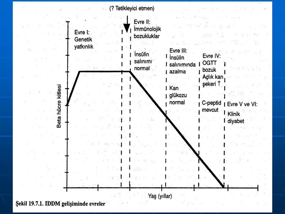 Tip I diyabetin gelişim evreleri 1. Genetik yatkınlık, 2. Otoimmün olayları başlatma, tetik mekanizması, 3. Aktif immünite dönemi, 4. Glukoz ile uyarı