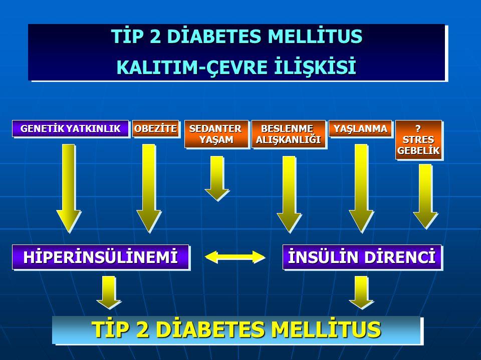 Tip 2 Diyabet Patofizyolojisi Hiperglisemi nedenleri Karaciğer Artmış glukoz üretimi Glukoz İnsülin rezistansı Reseptör + post-reseptör defektler Peri