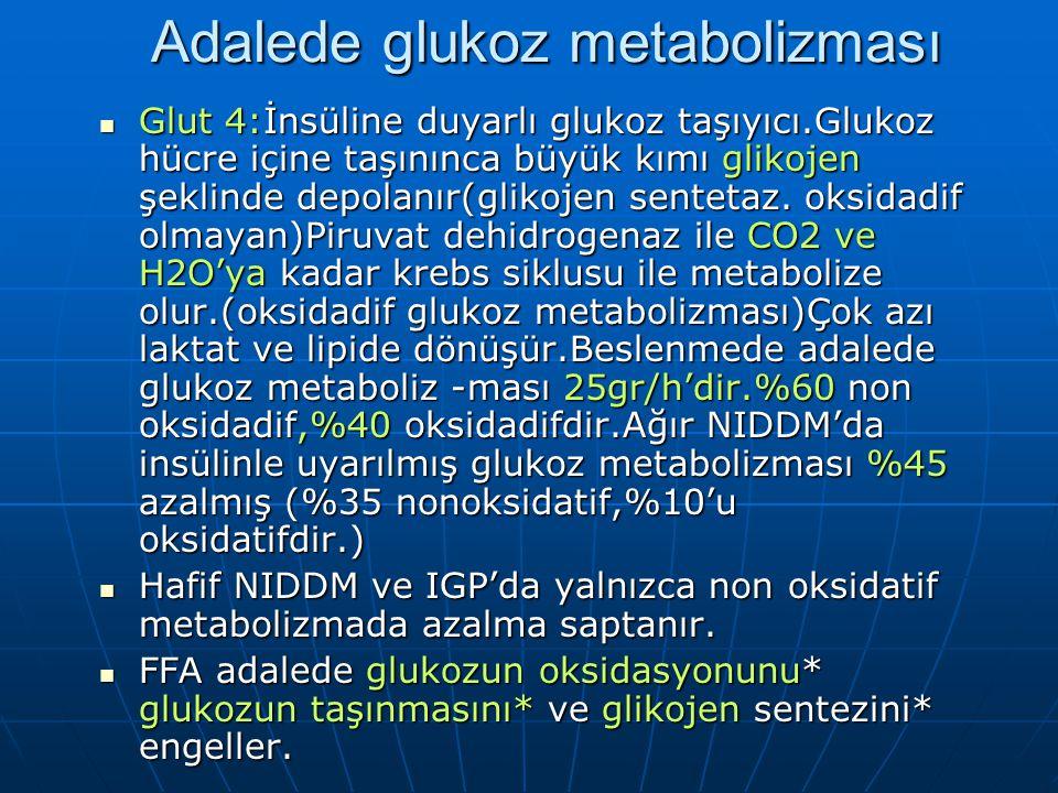 Tip 2 DM'UN PATOGENEZİ Açlık glukoz metabolizması:AKŞ 140 mg/dl olanda HGP(hepatik glukoz yapımı) artar.Karaciğerde insüline direnç var. Açlık glukoz