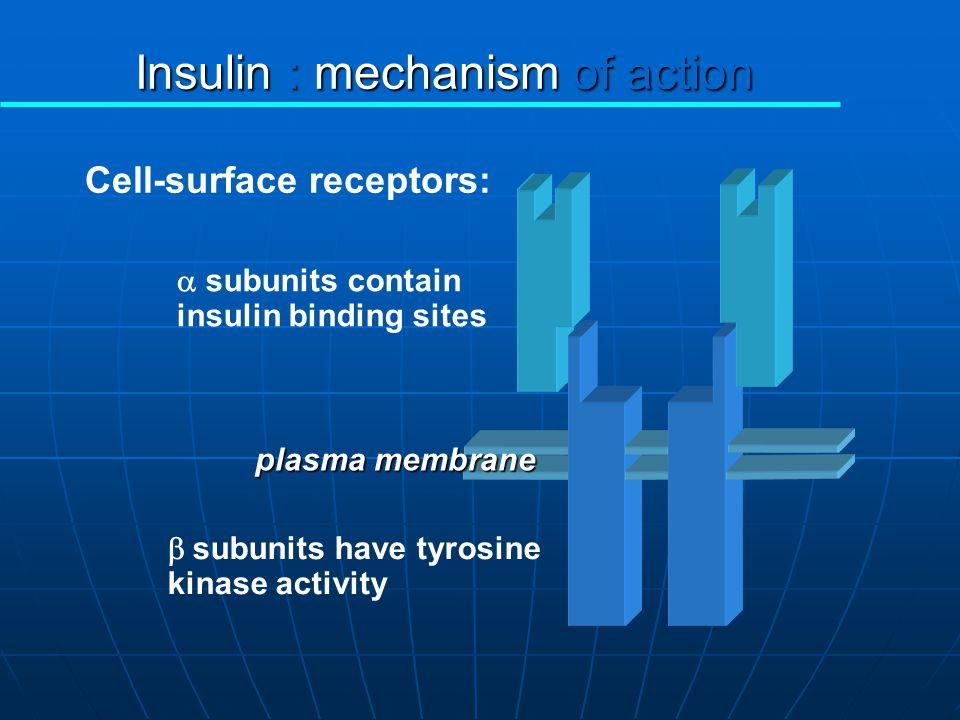 NIDDM'da insülin etkisindeki defektler Pre-reseptör Düzey: Pre-reseptör Düzey: İnsülinin taşınması İnsülinin taşınması endotel geçirgenliği endotel ge