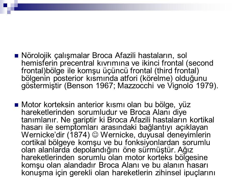 Nörolojik çalışmalar Broca Afazili hastaların, sol hemisferin precentral kıvrımına ve ikinci frontal (second frontal)bölge ile komşu üçüncü frontal (third frontal) bölgenin posterior kısmında atfori (körelme) olduğunu göstermiştir (Benson 1967; Mazzocchi ve Vignolo 1979).