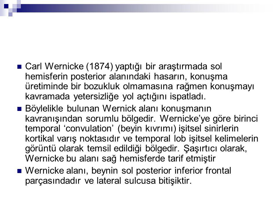 Carl Wernicke (1874) yaptığı bir araştırmada sol hemisferin posterior alanındaki hasarın, konuşma üretiminde bir bozukluk olmamasına rağmen konuşmayı kavramada yetersizliğe yol açtığını ispatladı.