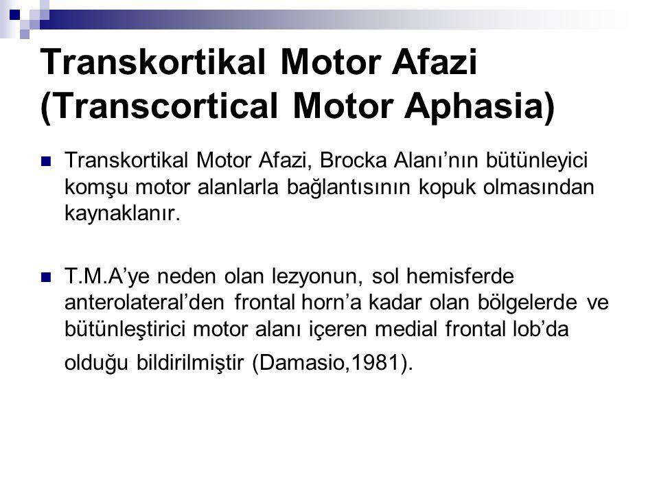 Transkortikal Motor Afazi (Transcortical Motor Aphasia) Transkortikal Motor Afazi, Brocka Alanı'nın bütünleyici komşu motor alanlarla bağlantısının kopuk olmasından kaynaklanır.