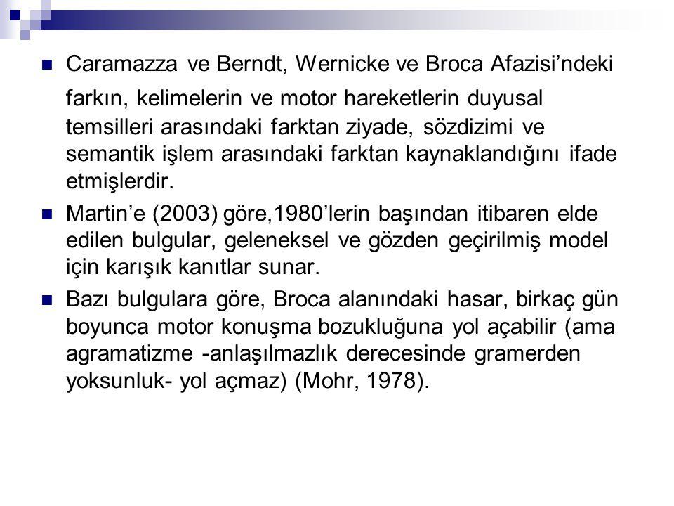 Caramazza ve Berndt, Wernicke ve Broca Afazisi'ndeki farkın, kelimelerin ve motor hareketlerin duyusal temsilleri arasındaki farktan ziyade, sözdizimi ve semantik işlem arasındaki farktan kaynaklandığını ifade etmişlerdir.