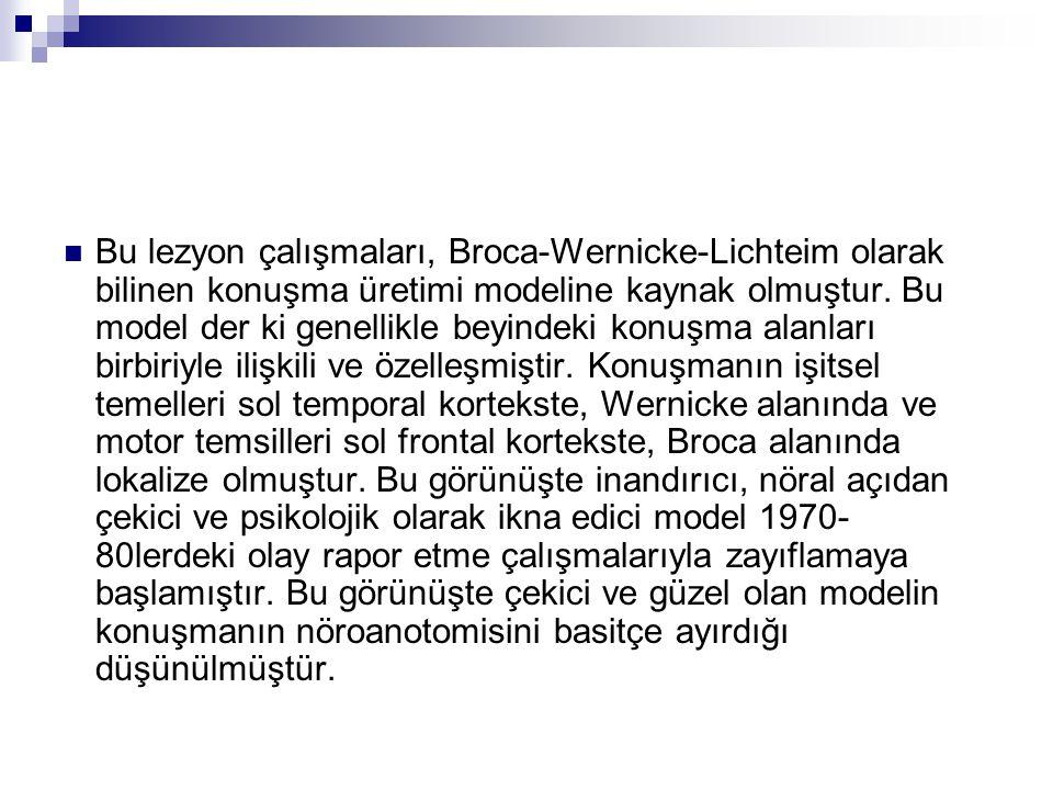 Bu lezyon çalışmaları, Broca-Wernicke-Lichteim olarak bilinen konuşma üretimi modeline kaynak olmuştur.