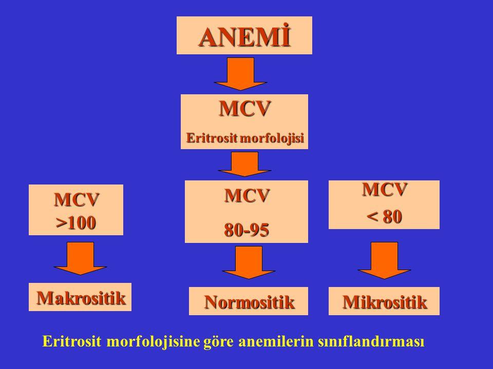 ANEMİ MCV Eritrosit morfolojisi MCV >100 MCV 80-95 Makrositik MCV < 80 NormositikMikrositik Eritrosit morfolojisine göre anemilerin sınıflandırması