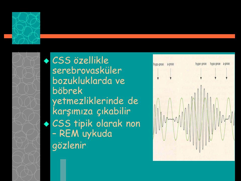  CSS özellikle serebrovasküler bozukluklarda ve böbrek yetmezliklerinde de karşımıza çıkabilir  CSS tipik olarak non – REM uykuda gözlenir