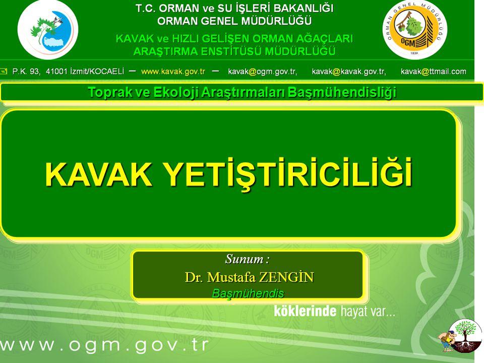 … Sunu Konu Adı KAVAK YETİŞTİRİCİLİĞİ Sunum : Dr. Mustafa ZENGİN Dr.