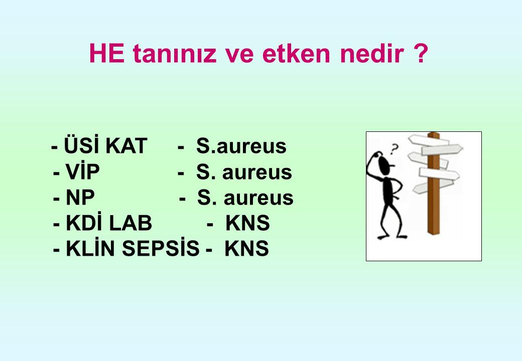 HE tanınız ve etken nedir ? - ÜSİ KAT - S.aureus - VİP - S. aureus - NP - S. aureus - KDİ LAB - KNS - KLİN SEPSİS - KNS