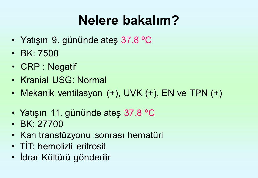 Nelere bakalım? Yatışın 9. gününde ateş 37.8 ºC BK: 7500 CRP : Negatif Kranial USG: Normal Mekanik ventilasyon (+), UVK (+), EN ve TPN (+) Yatışın 11.