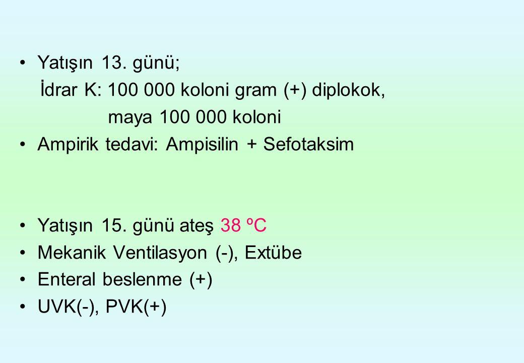 Yatışın 13. günü; İdrar K: 100 000 koloni gram (+) diplokok, maya 100 000 koloni Ampirik tedavi: Ampisilin + Sefotaksim Yatışın 15. günü ateş 38 ºC Me