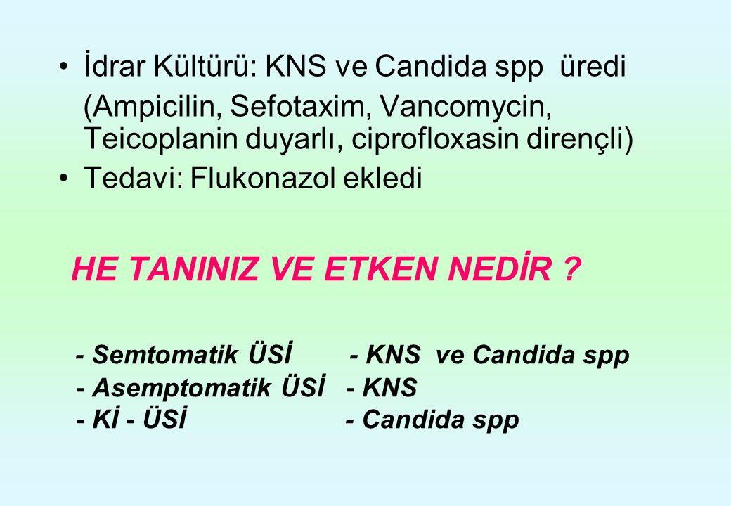 İdrar Kültürü: KNS ve Candida spp üredi (Ampicilin, Sefotaxim, Vancomycin, Teicoplanin duyarlı, ciprofloxasin dirençli) Tedavi: Flukonazol ekledi HE T