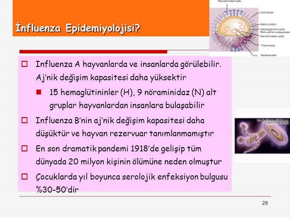 28 İnfluenza Epidemiyolojisi?  Influenza A hayvanlarda ve insanlarda görülebilir. Aj'nik değişim kapasitesi daha yüksektir 15 hemaglütininler (H), 9