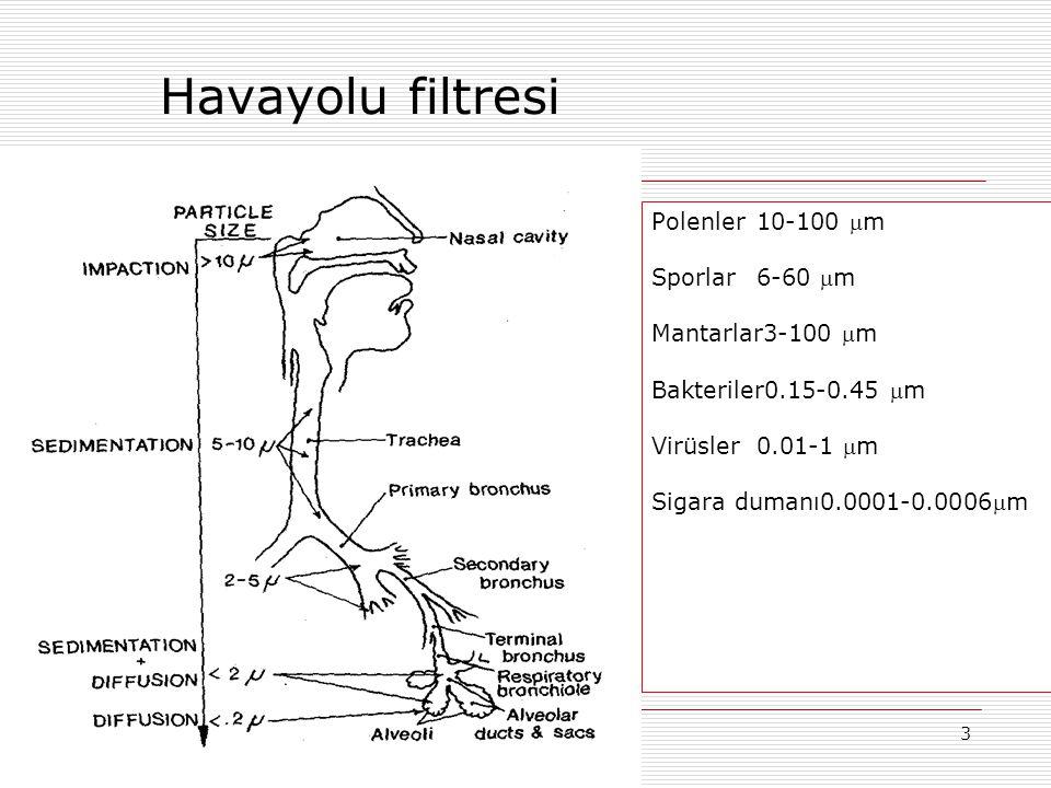 3 Havayolu filtresi Polenler10-100 m Sporlar6-60 m Mantarlar3-100 m Bakteriler0.15-0.45 m Virüsler0.01-1 m Sigara dumanı0.0001-0.0006m
