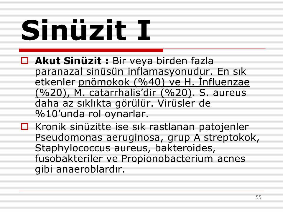 55 Sinüzit I  Akut Sinüzit : Bir veya birden fazla paranazal sinüsün inflamasyonudur. En sık etkenler pnömokok (%40) ve H. İnfluenzae (%20), M. catar