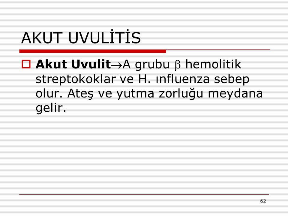 62 AKUT UVULİTİS  Akut UvulitA grubu  hemolitik streptokoklar ve H.