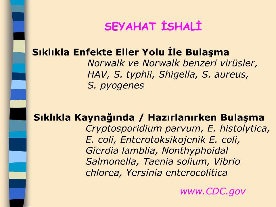 SEYAHAT İSHALİ Sıklıkla Enfekte Eller Yolu İle Bulaşma Norwalk ve Norwalk benzeri virüsler, HAV, S. typhii, Shigella, S. aureus, S. pyogenes Sıklıkla