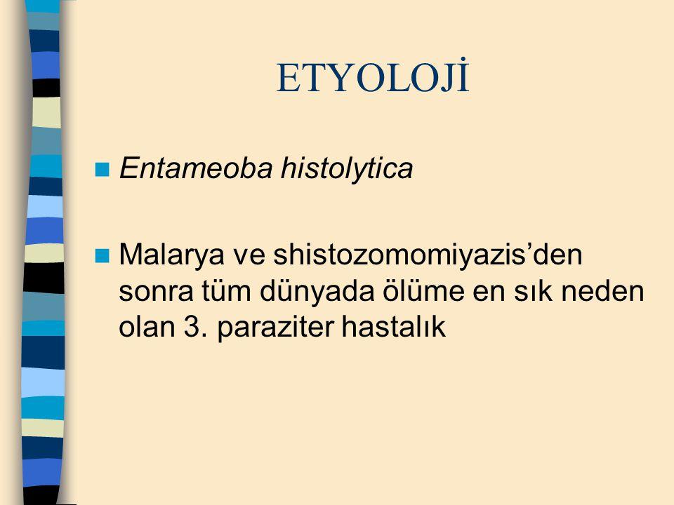 ETYOLOJİ Entameoba histolytica Malarya ve shistozomomiyazis'den sonra tüm dünyada ölüme en sık neden olan 3. paraziter hastalık