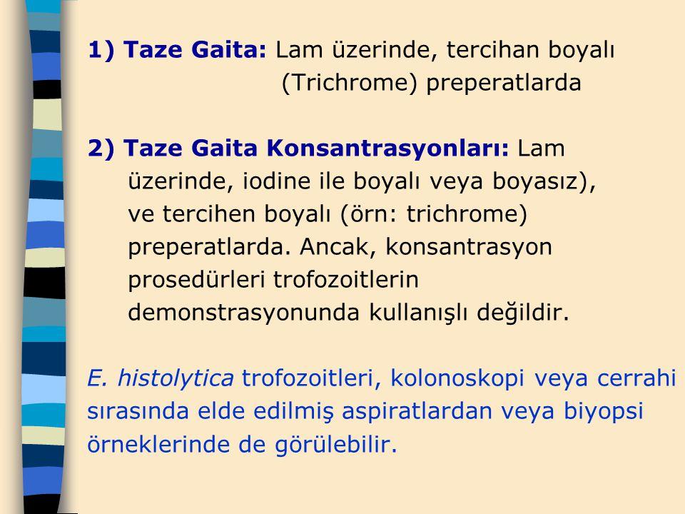 1) Taze Gaita: Lam üzerinde, tercihan boyalı (Trichrome) preperatlarda 2) Taze Gaita Konsantrasyonları: Lam üzerinde, iodine ile boyalı veya boyasız),
