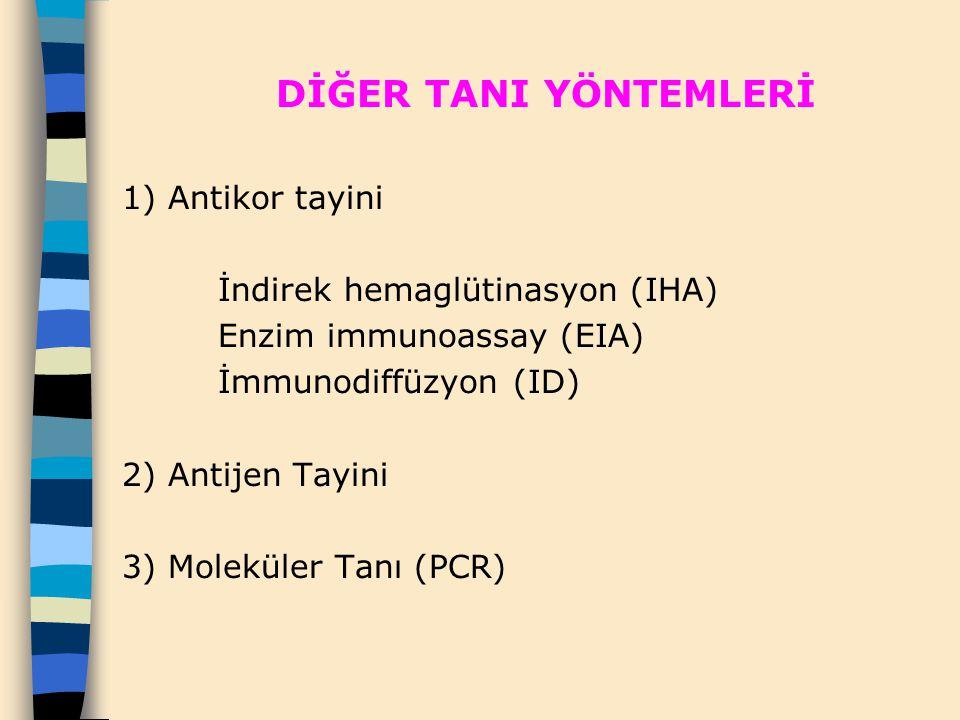 DİĞER TANI YÖNTEMLERİ 1) Antikor tayini İndirek hemaglütinasyon (IHA) Enzim immunoassay (EIA) İmmunodiffüzyon (ID) 2) Antijen Tayini 3) Moleküler Tanı