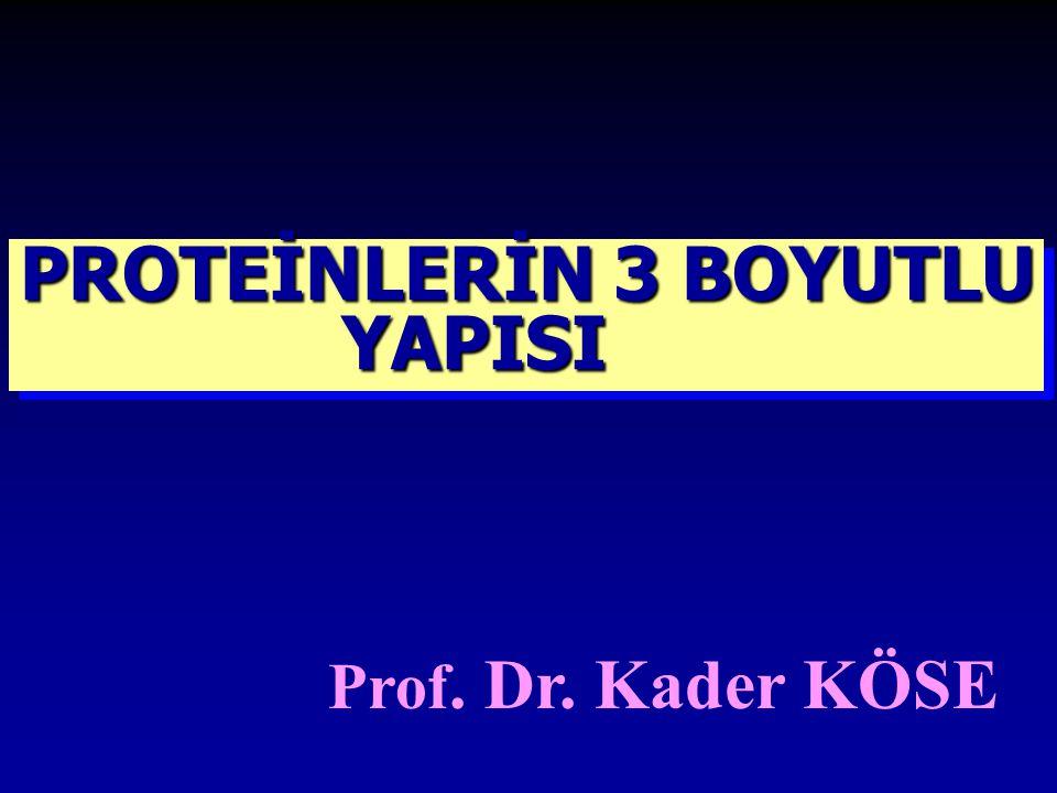 Prof. Dr. Kader KÖSE PROTEİNLERİN 3 BOYUTLU YAPISI YAPISI PROTEİNLERİN 3 BOYUTLU YAPISI YAPISI