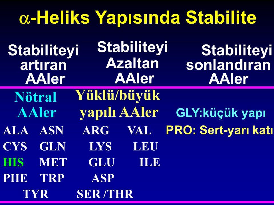  -Heliks Yapısında Stabilite Stabiliteyi artıran AAler Stabiliteyi Azaltan AAler Stabiliteyi sonlandıran AAler Nötral AAler Yüklü/büyük yapılı AAler
