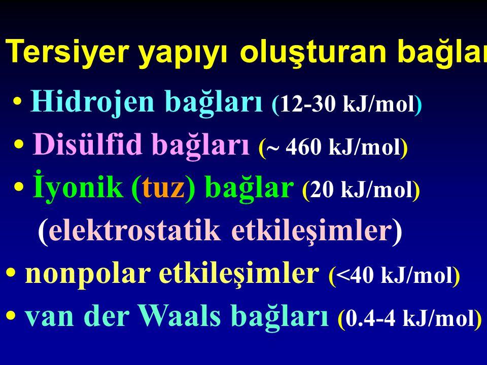 Hidrojen bağları (12-30 kJ/mol) Disülfid bağları (  460 kJ/mol) İyonik (tuz) bağlar (20 kJ/mol) (elektrostatik etkileşimler) nonpolar etkileşimler (<