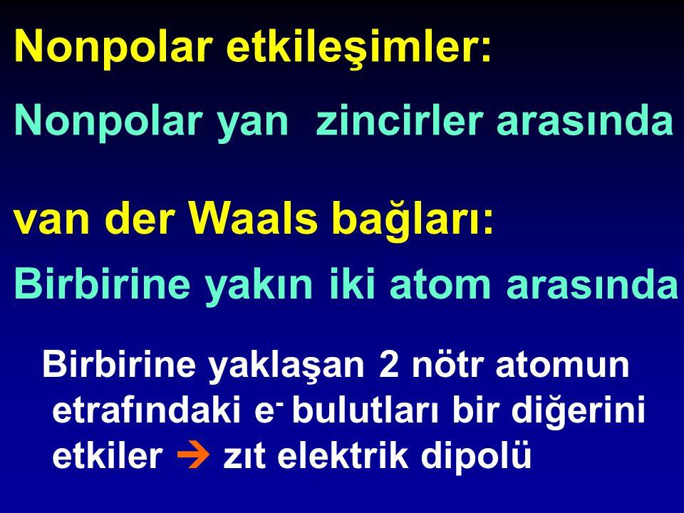 van der Waals bağları: Birbirine yakın iki atom a rasında Nonpolar etkileşimler: Nonpolar yan zincirler arasında Birbirine yaklaşan 2 nötr atomun etra