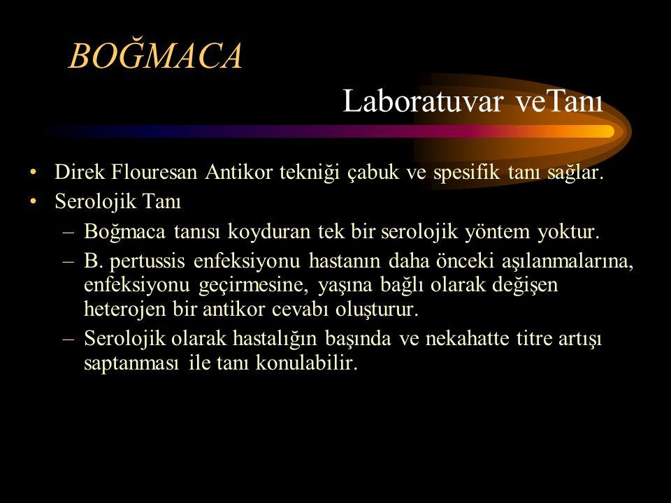 BOĞMACA Direk Flouresan Antikor tekniği çabuk ve spesifik tanı sağlar. Serolojik Tanı –Boğmaca tanısı koyduran tek bir serolojik yöntem yoktur. –B. pe