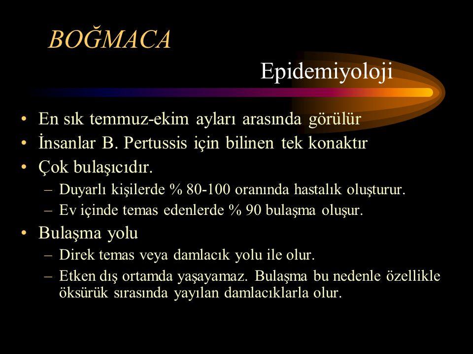BOĞMACA B.