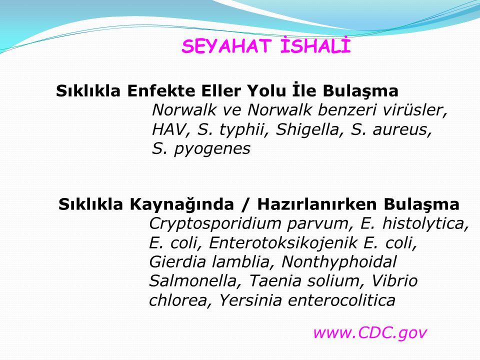 SEYAHAT İSHALİ Sıklıkla Enfekte Eller Yolu İle Bulaşma Norwalk ve Norwalk benzeri virüsler, HAV, S.