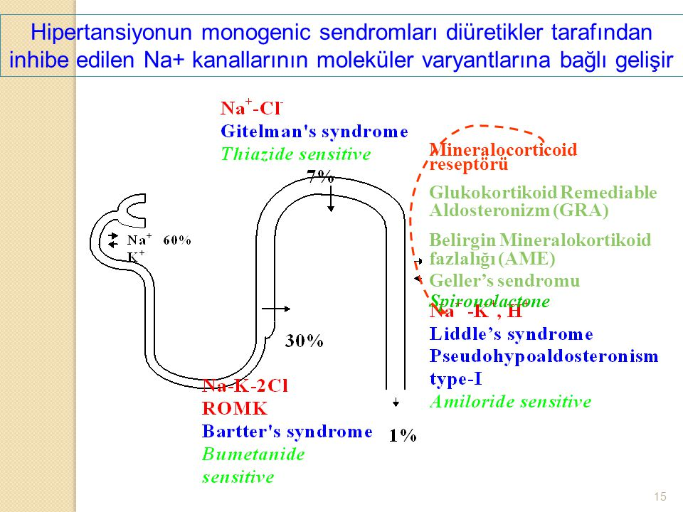 Hipertansiyonun monogenic sendromları diüretikler tarafından inhibe edilen Na+ kanallarının moleküler varyantlarına bağlı gelişir Mineralocorticoid re