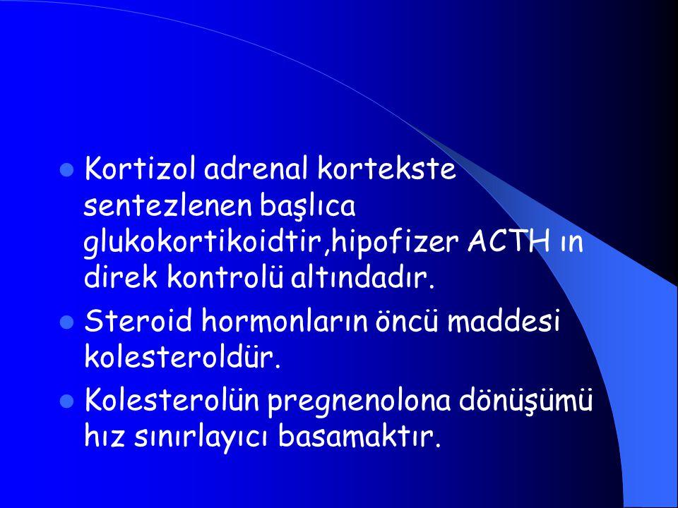 Kortizol adrenal kortekste sentezlenen başlıca glukokortikoidtir,hipofizer ACTH ın direk kontrolü altındadır. Steroid hormonların öncü maddesi koleste