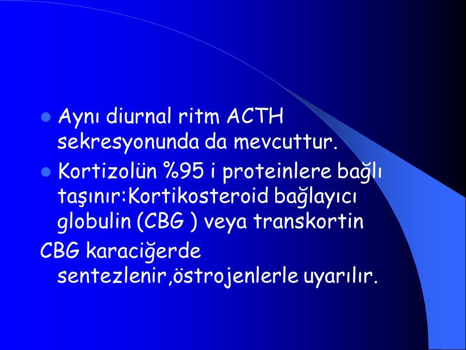 Aynı diurnal ritm ACTH sekresyonunda da mevcuttur. Kortizolün %95 i proteinlere bağlı taşınır:Kortikosteroid bağlayıcı globulin (CBG ) veya transkorti