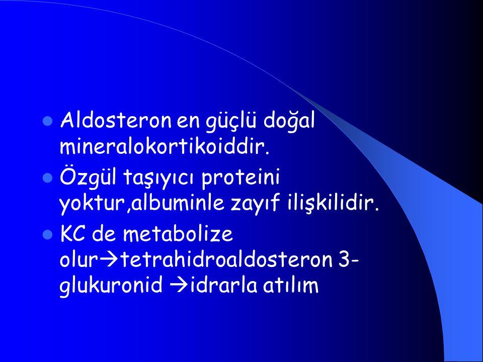 Aldosteron en güçlü doğal mineralokortikoiddir. Özgül taşıyıcı proteini yoktur,albuminle zayıf ilişkilidir. KC de metabolize olur  tetrahidroaldoster